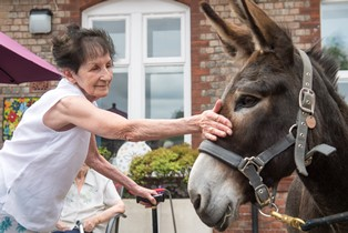 Day care patient Genevieve Grey, 80 and Charlie the donkey (credit Jon Parker Lee).